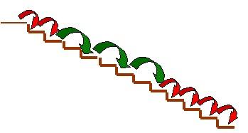 1-step-2-steps